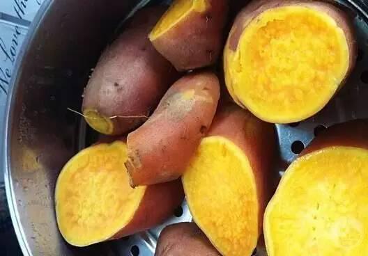 简单有效的自制饵料——红薯作饵