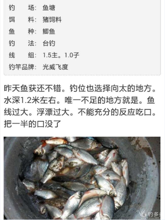 【第六期】老宋头猪饲料,900克野战装