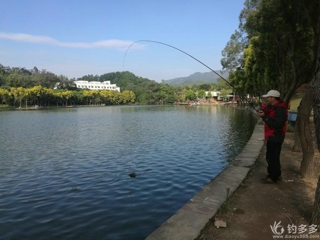 【第十一期征帖赛】007钓鱼日记--木棍与蚝排