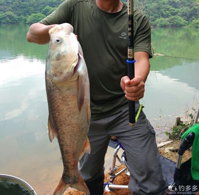 【八月好物】秀长枪短炮秀渔获