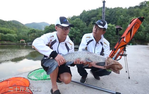 【最佳钓技】第1集 带你走进钓鱼世界