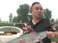 【黑坑江湖 】第六季22 北京大物(上)