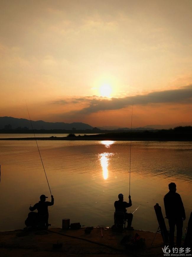 【第十八期征帖赛】回顾钓鱼365春夏秋冬