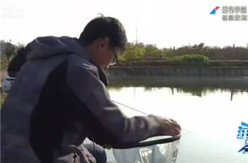 【垂钓学院】第五季08 低温散炮巧诱鱼