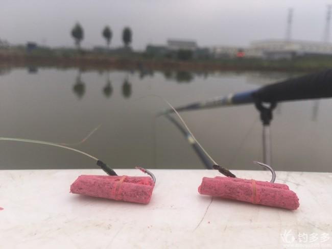 大物塘实操灵、顿、跑组合钓法。
