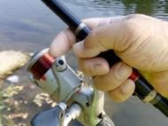 【原创首发】【第21期征帖赛】矶竿在淡水水域的使用方法