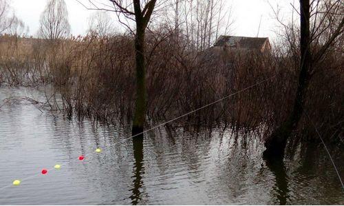 冬季传统钓七星漂的使用技巧