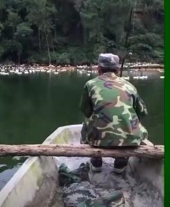 这种绝活儿感觉要失传了,在80年代钓鱼经常还能看到!