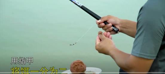 《学钓鱼系列》新手十分钟学会抛竿-(3)持竿搓饵
