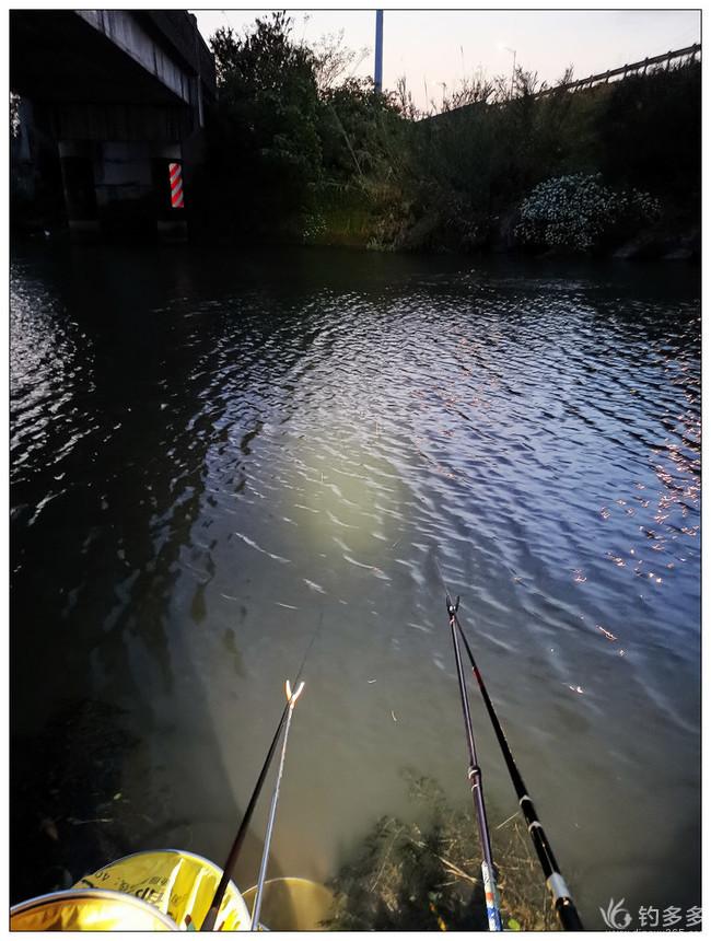 【原创】白天艳阳高照——晚上小河钓钓
