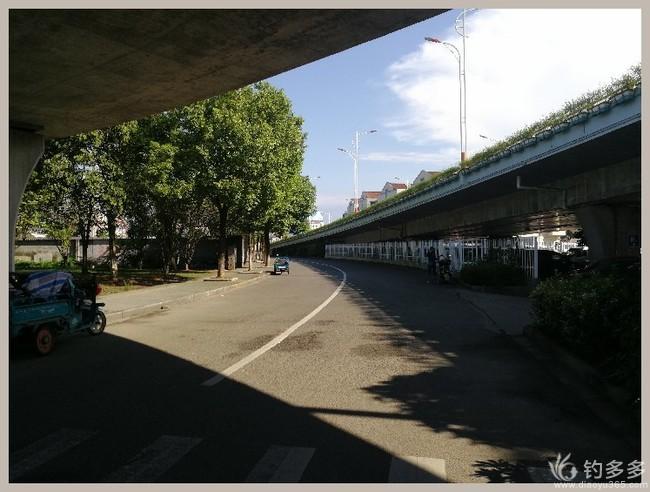 【结伴原创28】首钓新城市,高温也丰收-20190824