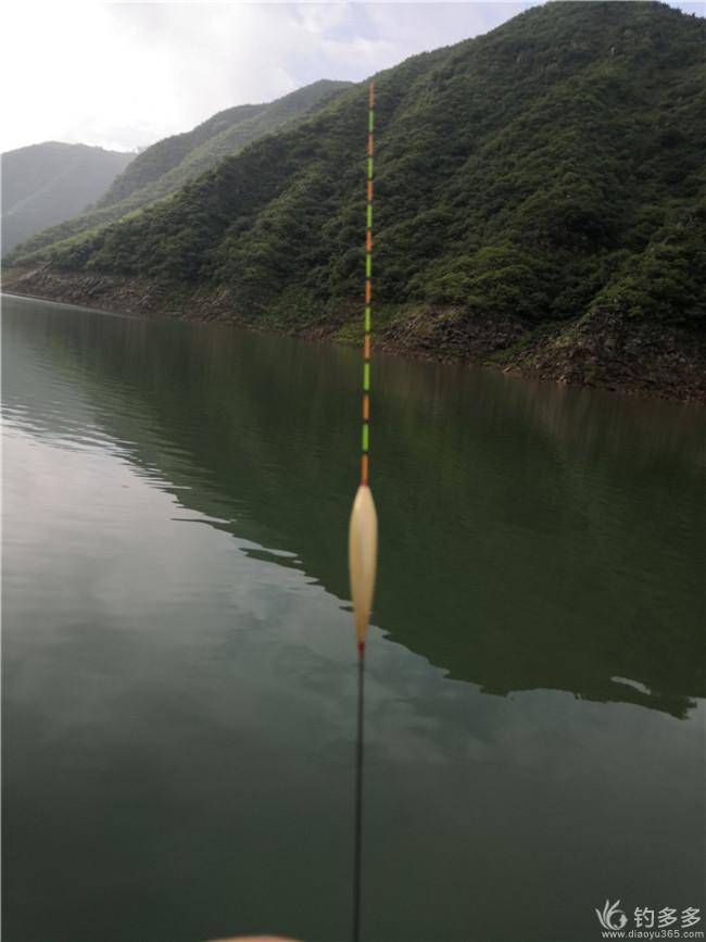 【原创】首钓官道狂钓草  下