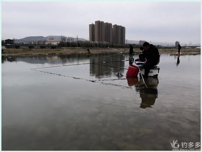 【原创】苦中作乐水中钓