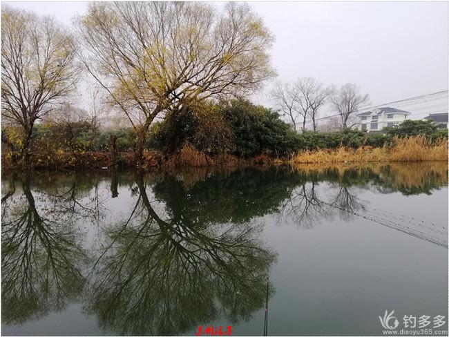 2019收官之战:上午求鱼,下午求大