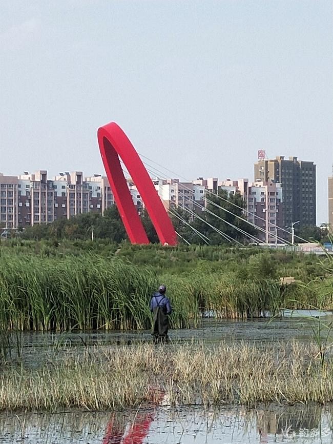 家长行(下)—游钓小凌河漫水桥