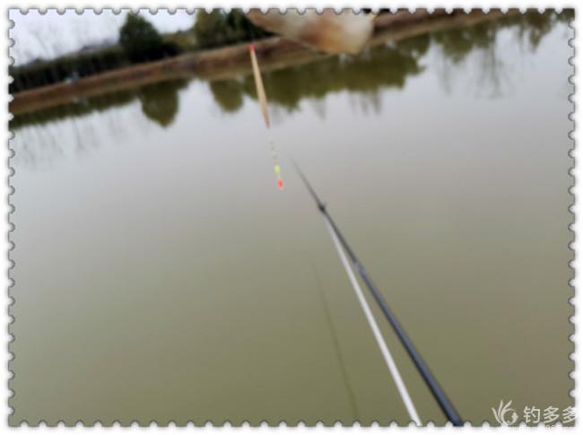 天气鱼情都不佳   神饵难有好渔获